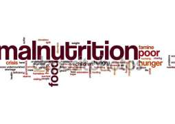 Indonesia: People died of malnutrition