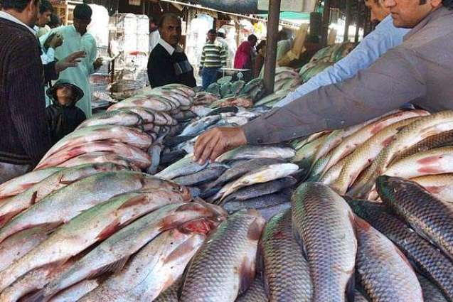 Chinese Co. shows interest to invest in fisheries industry in Sindh