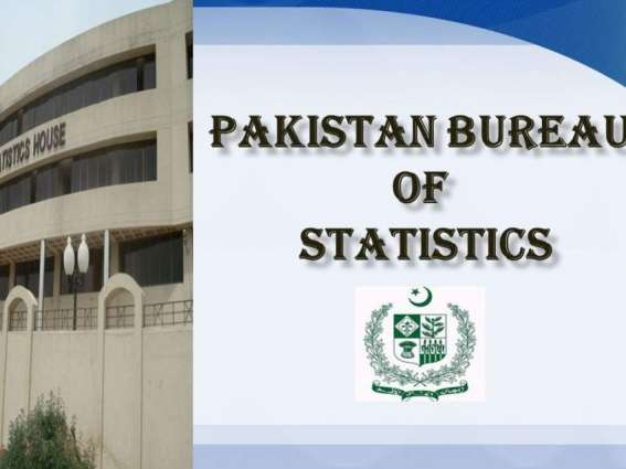 Intl' conference on holding 6th population census from July 25