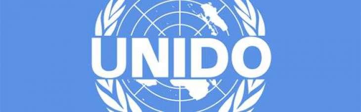UNIDO to launch SEI tomorrow