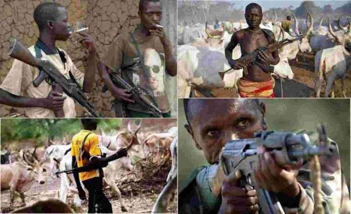 Fulani herdsmen attack farmers in central Nigeria: police