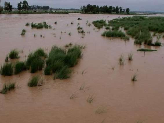 Low level flooding in Sialkot