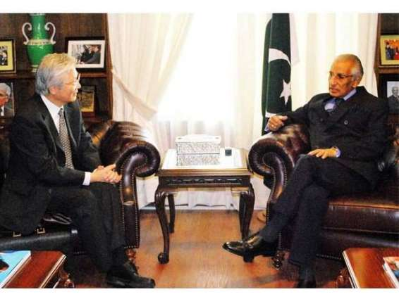 Pakistan wants stable, peaceful Afghanistan: Special Assistant