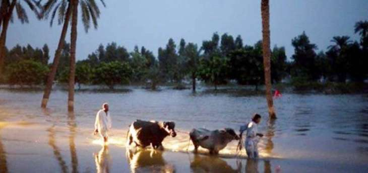 Flood situation in Mirpur under full control: DC