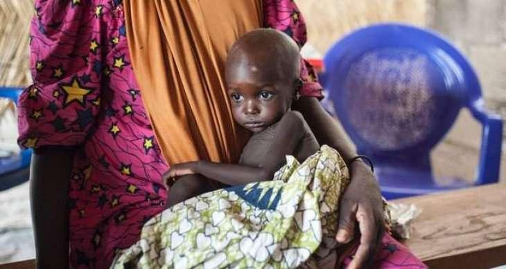 UN humanitarian convoy in Nigeria ambushed by Boko Haram