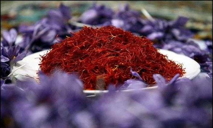 ایران زعفران پیدا کرنڑآلا دنیا دا ساریاں توں وڈا ملک بنڑ گئے