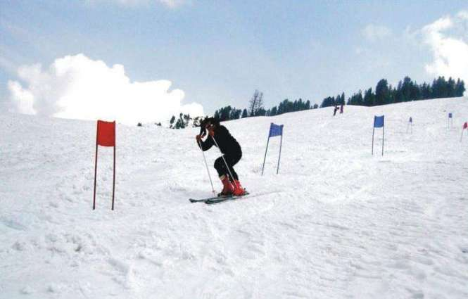 An eight-time national gold medalist runs tea stall at Malam Jabba peak