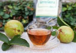 Guava leaf tea prevents from gastrointestinal, circulatory and heart diseases, said US health experts