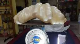 Philippines: Fisherman kept giant pearl worth $100m hidden under his bed for a decade
