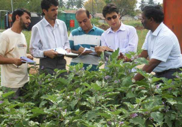 U.S. Department of Agriculture supports increased Pakistani Agricultural Exports