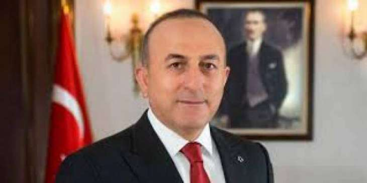 Turkish FM forces to close down Gulen-run schools in Pakistan