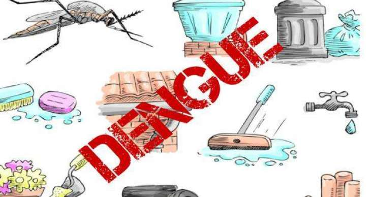 Dengue vector surveillance data of high risk districts highlighted