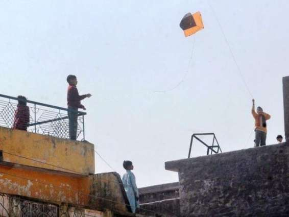 Minor kite-flyer electrocuted