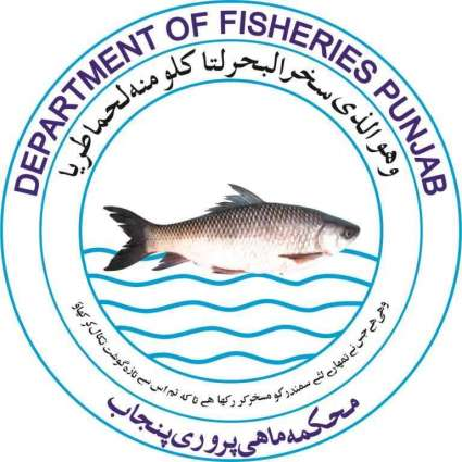 Efforts to promote artificial fish breeding yielding results