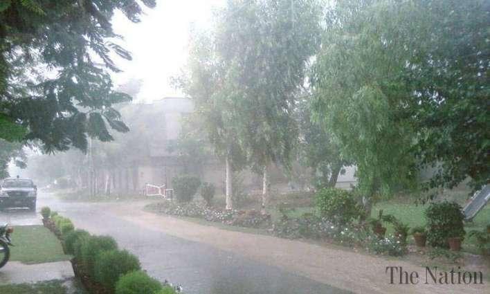Rain forecast for city