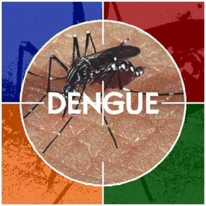Secretary  Environment reviews anti dengue  campaign