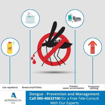 Coordinated efforts stressed to eliminate dengue