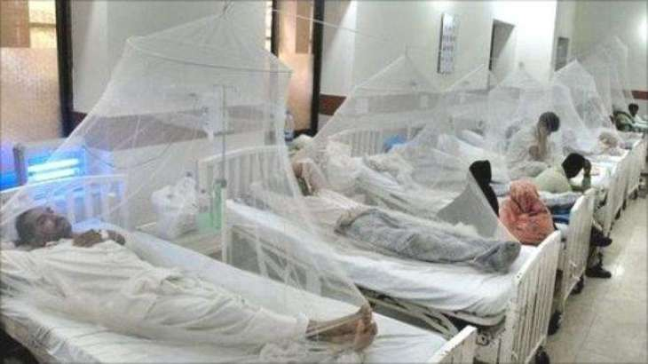 Hospitals management asked to take dengue preventive measures