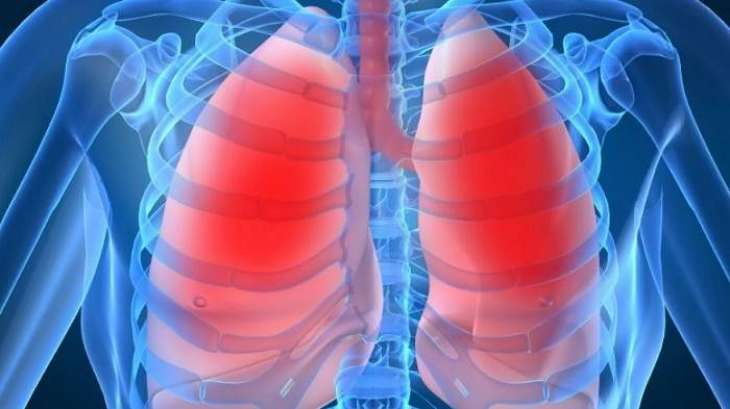 Novel 4D technology may aid treatment for lung disease