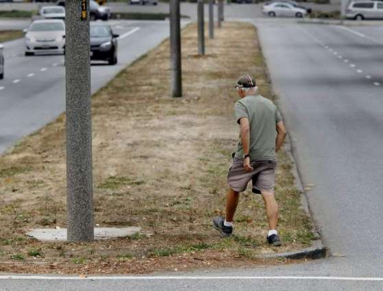 Wild bushes on footpaths irks residents