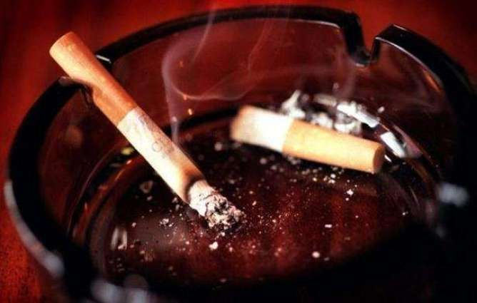 Plain cigarettes encourage adults to quit smoking