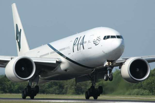 Bird bumped into aircraft traveling to Lahore from New York
