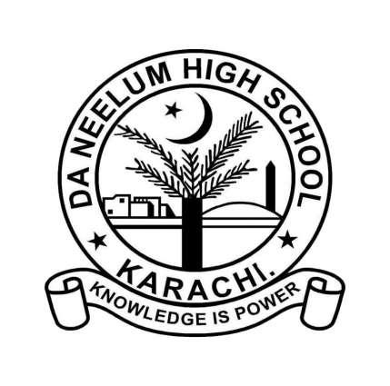 DA Neelum High School student excels