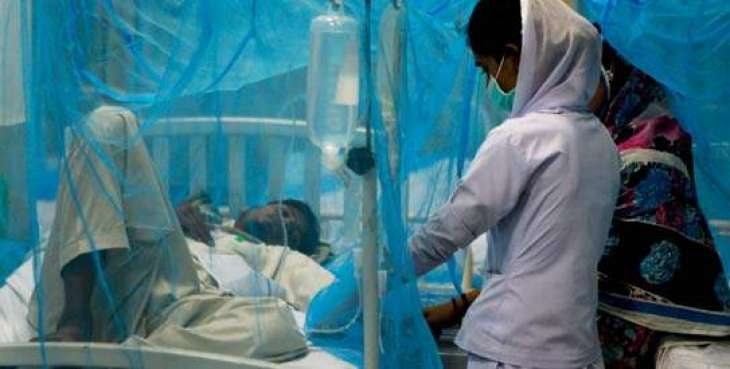 Efforts underway to wipe out dengue: Advisor