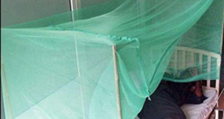Anti-Congo virus campaign launched in Mardan