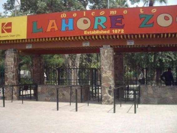 More than 37,000 people visited Lahore Zoo on I-Day