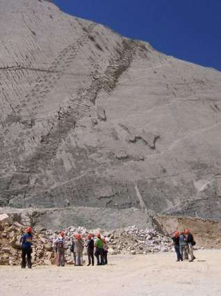 Following dinosaur footsteps in Bolivia's fossil mecca