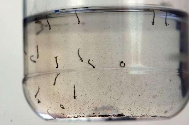 Sheikhupura: AC's raid on beverage factory, dengue larva found