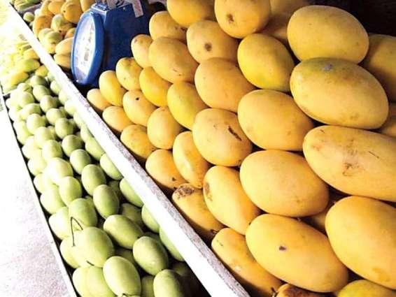 USAID helping Pakistani mango farmers access world markets