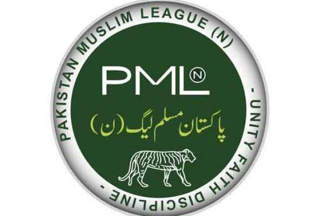 PML-N has put country on path to progress: MNA