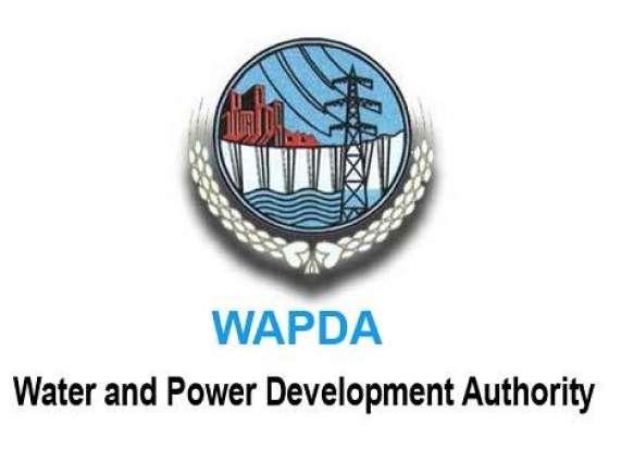 Chairman WAPDA resigns