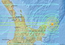 Earthquake of 7.1 magnitude shook New Zealand's North Island