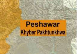 48 suspects arrested in KP