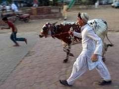پاکستان ریلوے عید الاضحیٰ دے  موقع تے  8خصوصی ٹریناںچلیسی