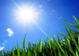 Hot and dry weather in most parts today