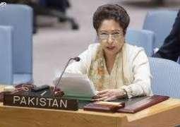 پاکستان نے بھارتی فوج ولوں آزاد کشمیر وچ مسافر بس تے ایمبولینس اُتے حملے دا معاملا اقوام وچ چُک دِتا