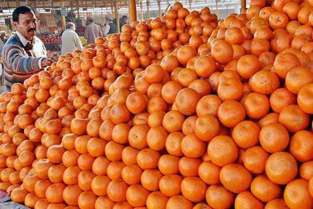 Seedless Kinnow can increase exports: citrus experts