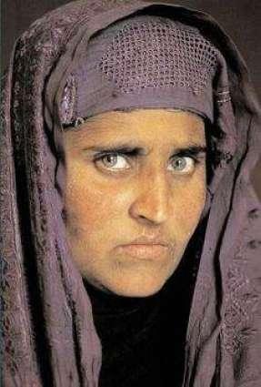 پشاور ہائی کورٹ نے شرب گلہ نوں ملک بدر کرن دا حکم دے دِتا