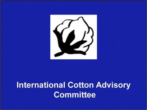 Uzbekistan to host 76th ICAC Plenary Meeting next year