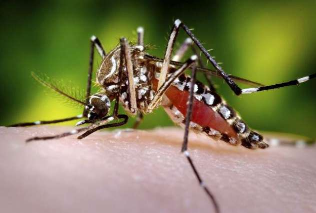 Health precautions urged against Malaria and Dengue fever