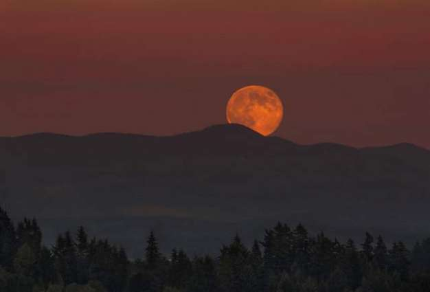 14th November's Supermoon Will Be Record-Setting