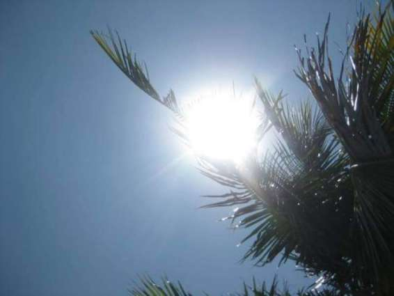 Met Office forecast hot and dry weather for city for next 24 hrs