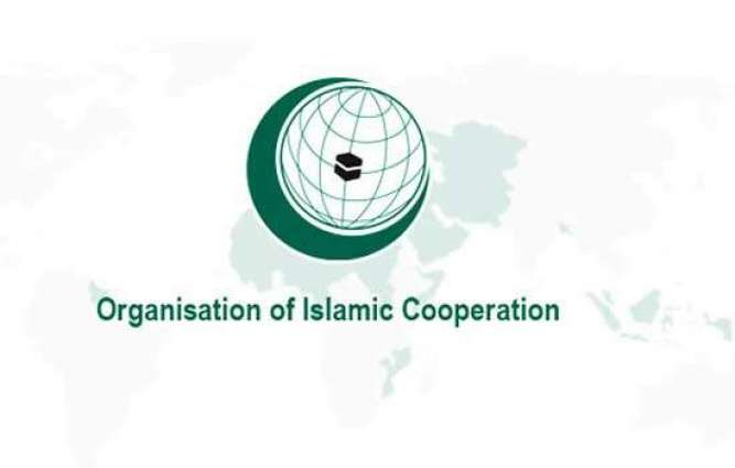 OIC welcomes Saudi support to Rohingya in Myanmar's Rakhine state