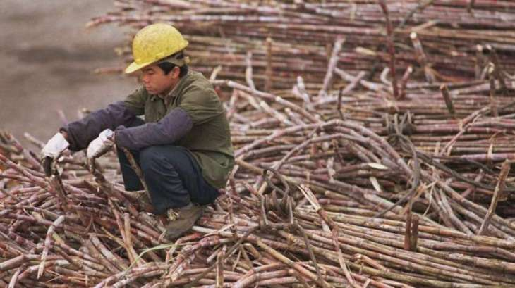 Sugar cane cess committee meeting on Nov 11