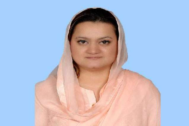 Marriyum for concerted efforts to further improve Pakistan's image