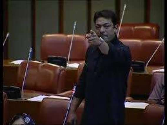 Faisal Raza Abidi granted bail